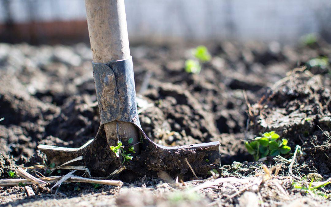 Gips als bodemverbeteraar: de veelzijdigheid van gipsafval